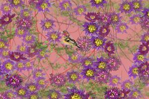 Pink floral pattern by Claire Westwood