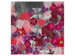 Red and Pink mix by Claire Westwood