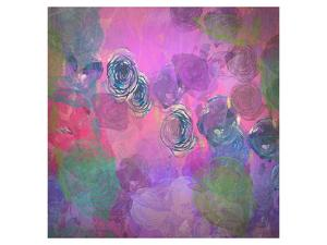 Roses Haze by Claire Westwood