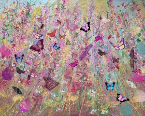 Wild flowers by Claire Westwood