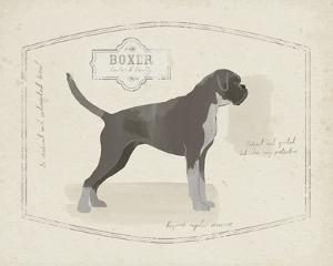 Dog Club - Boxer by Clara Wells