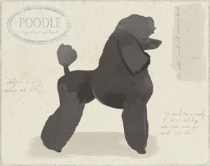 Dog Club - Poodle by Clara Wells