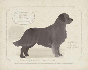 Dog Club - Retriever by Clara Wells