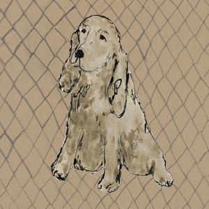 Boho Dogs II by Clare Ormerod
