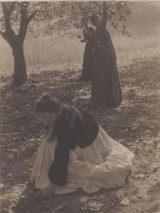 The Orchard by Clarence White