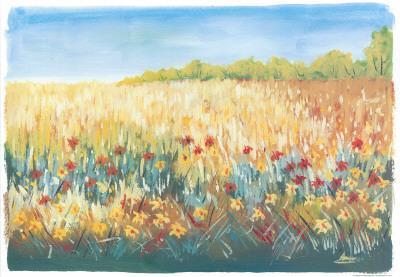 Flower Field I