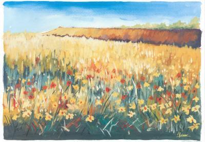 Flower Field II