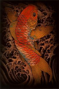 Koi by Clark North