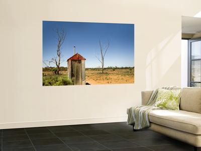 https://imgc.artprintimages.com/img/print/classic-australian-outdoor-toilet-dunny_u-l-pfh0zu0.jpg?p=0