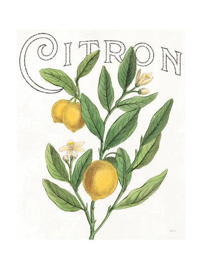 Classic Citrus V-Sue Schlabach-Art Print