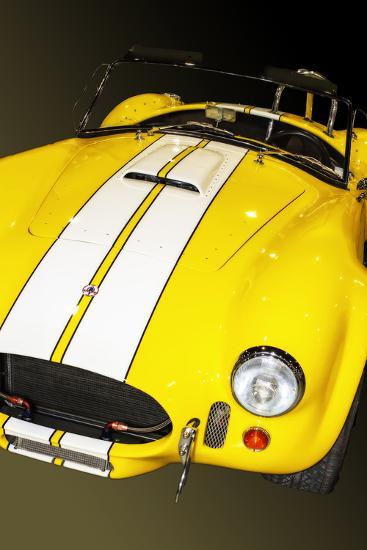 Classic Cobra I-Alan Hausenflock-Photographic Print