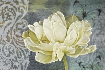 https://imgc.artprintimages.com/img/print/classic-double-white-tulip-ii_u-l-q1a6nkt0.jpg?p=0