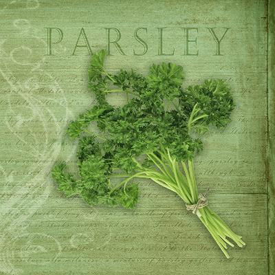 Classic Herbs Parsley-Cora Niele-Photographic Print