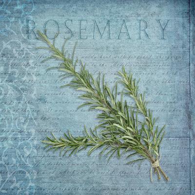 Classic Herbs Rosemary-Cora Niele-Photographic Print