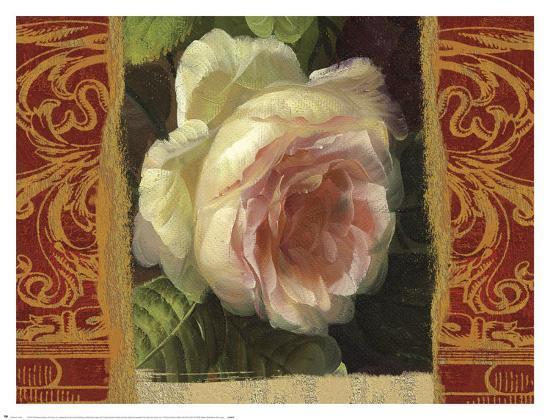 Classic White Rose-Tony Lupas-Art Print