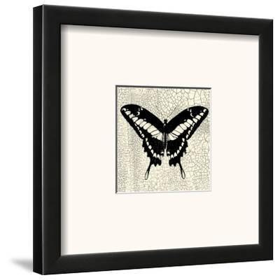 Classical Butterfly IV--Framed Art Print