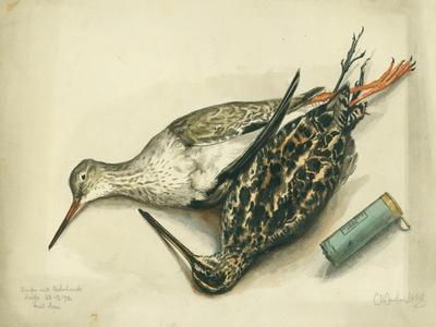 Snipe and Redshank, 1872