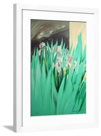 Provence aux Iris