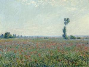 Champ de coquelicots, 1881 by Claude Monet