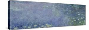 Left Centre Piece of the Large Water Lily Painting in the Musée De L'Orangerie by Claude Monet