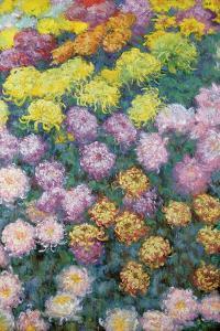 Massif De Chrysanthemes, 1897 by Claude Monet