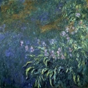 Monet: Irises By The Pond by Claude Monet