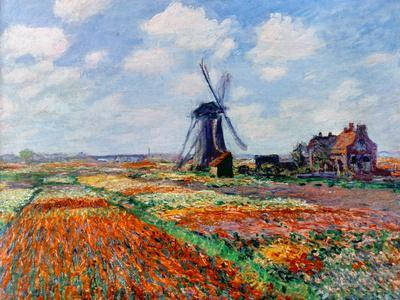 Monet: Tulip Fields, 1886