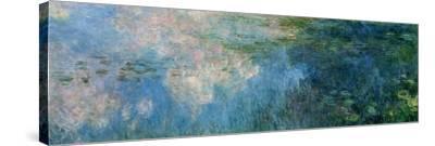 Nymphéas (Waterlilies), Paneel C II