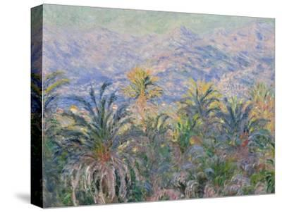 Palm Trees at Bordighera, 1884