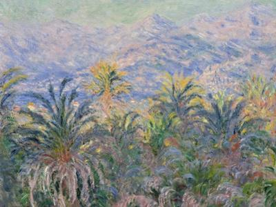 Palm Trees at Bordighera, 1884 by Claude Monet