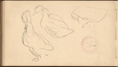 Study of Ducks (Pencil on Paper) by Claude Monet