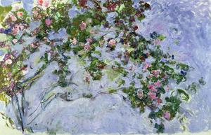 The Roses, 1925-26 by Claude Monet