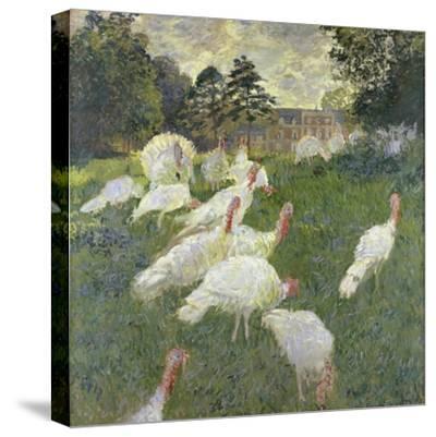 The Turkeys, 1877