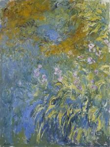 The Yellow Iris by Claude Monet