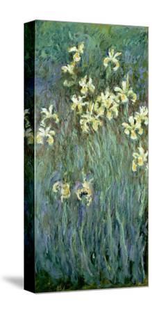 The Yellow Irises