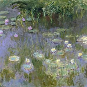 Water Lilies, C1915 by Claude Monet