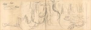 Weeping Willows Reflecting and Nympheas (Pencil on Paper) by Claude Monet