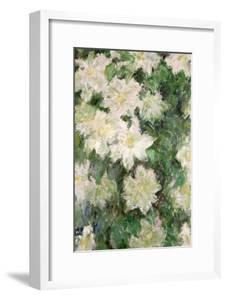 White Clematis, 1887 by Claude Monet