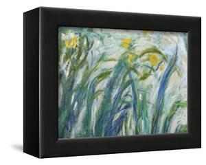 Yellow and Purple Irises, 1924-25 (Detail) by Claude Monet