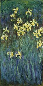 Yellow Irises, c.1914-17 by Claude Monet