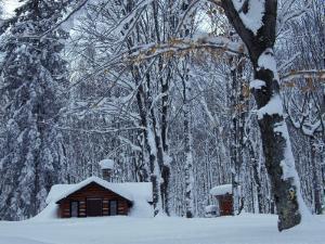 Log Cabin in Snowy Woods, Chippewa County, Michigan, USA by Claudia Adams