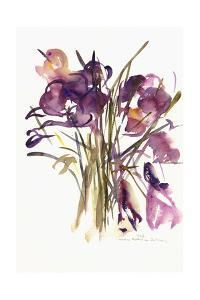 Crocus, 2003 by Claudia Hutchins-Puechavy