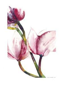 Magnoila 1 by Claudia Liebenberg