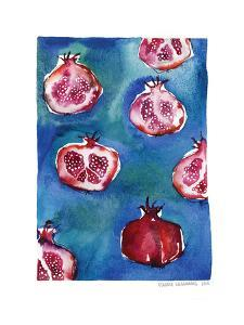 Pattern_pomegranate by Claudia Liebenberg