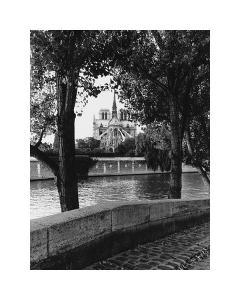 Notre Dame by Clay Davidson