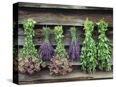 Herbs Drying Upside Down