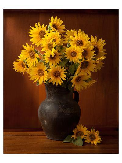 Clay Pot Sunflowers Still Life--Art Print