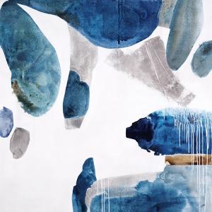 Aquarium Pebbles by Clayton Rabo