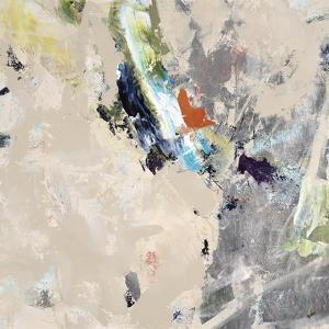 Silver Sweep III by Clayton Rabo