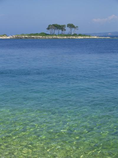 Clear Water Off Red Island, at Rovinj, Croatia, Europe-Short Michael-Photographic Print